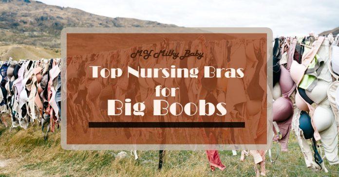 Best Nursing Bras for Large Breasts Header