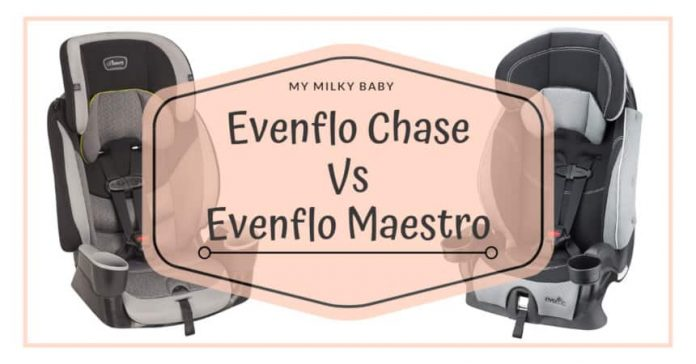 Evenflo Chase Vs Maestro What is The Differences Between The Two Header